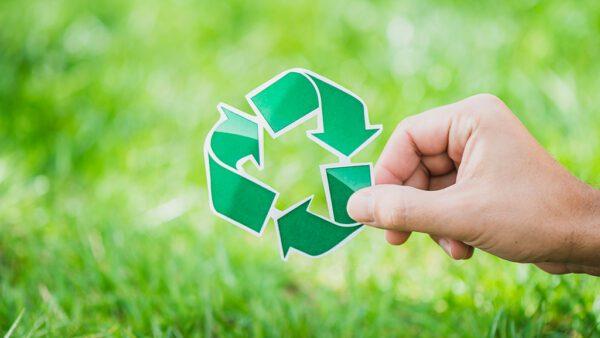 Environmental Feauture